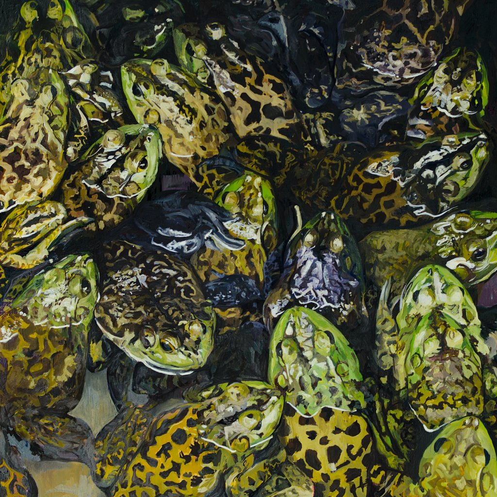 Horney Toads, 2011