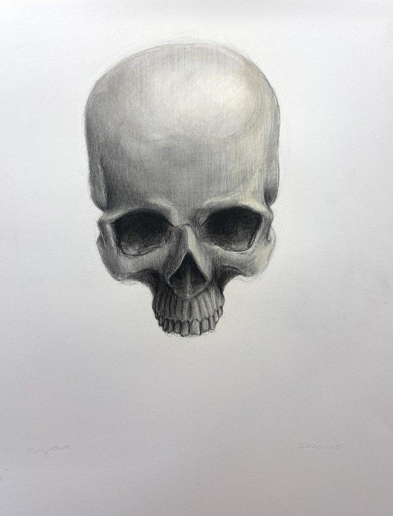 Skull, 2020